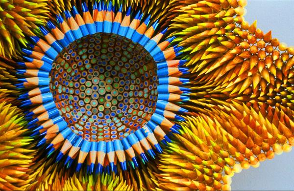 Jennifer Maestre Arte Con Lpices De Colores Exticas