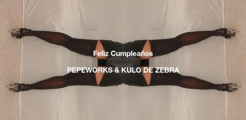 Primer aniversario de Pepeworks & Kulo de Zebra, ¡Feliz cumpleaños!